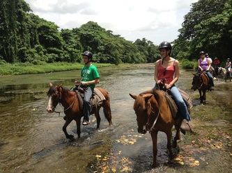 Punta Cana Horseback Riding Tour – Horseback ride in Punta Cana