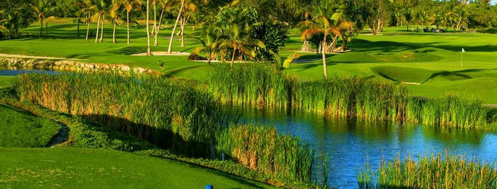 The Lakes Barcelo Bavaro Golf Course